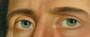 George Caleb Bingham, Shubael Allen, 1835 (Detail-Eyes)